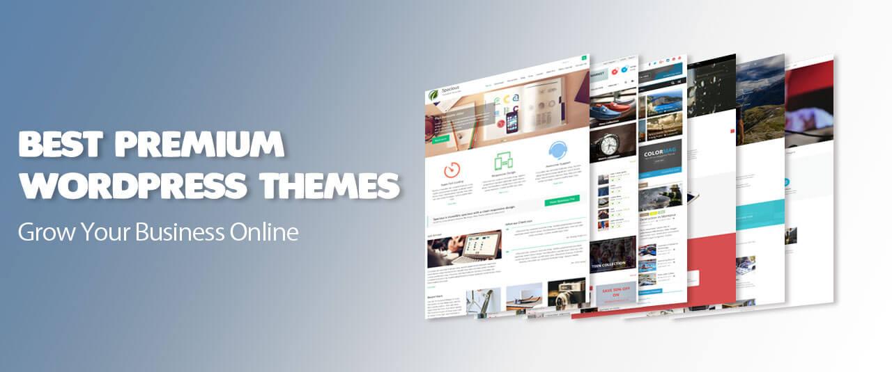 best-premium-wordpress-themes[1]